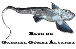 Tiburones y Peces de España